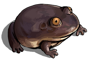 Brown Cartoon Frog Icon